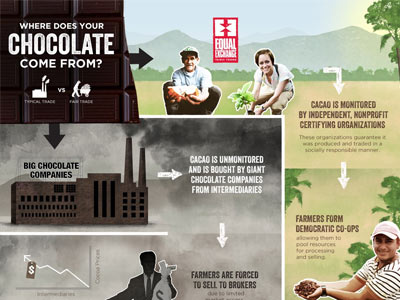 chocolate infographic