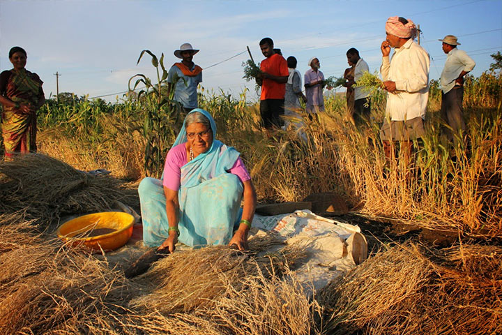 Planting in India