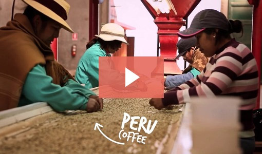 Coffee in Peru
