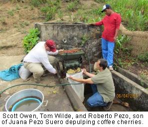 Scott Owen, Tom Wilde, and Roberto Pezo depulping coffee cherries