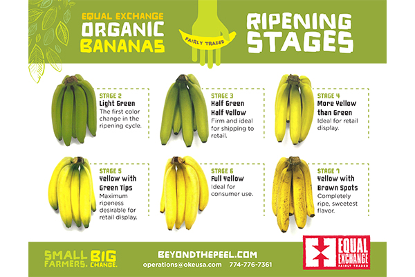 Ripening Guide