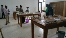 DRC cupping