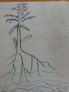 roya tree sketch