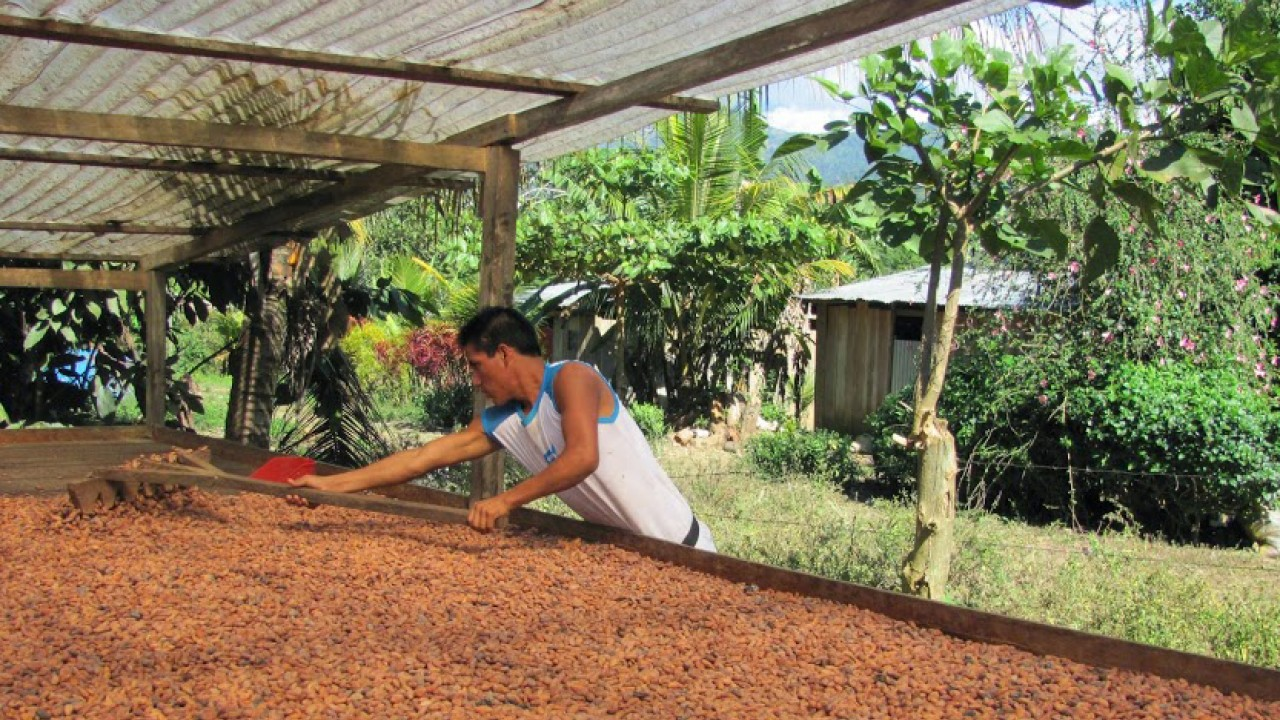 El Quinacho farmer partners