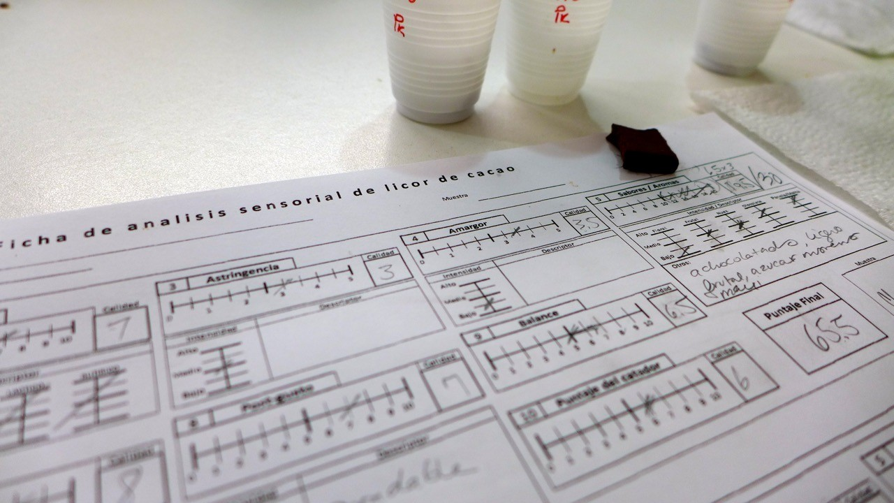 cacao tasting form