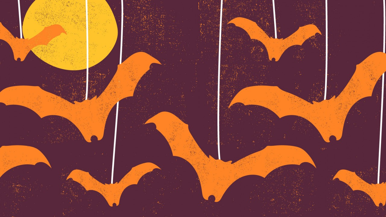 Graphic of bats flying in front of a moon