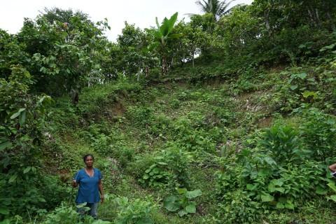 Maria Teresa Carvajal Raad shows us a landslide from the 2016 earthquake on their farm