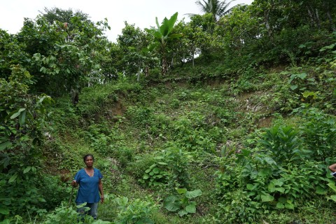 Maria Teresa Carvajal Raad shows us a landslide from the 2016 earthquake on their farm