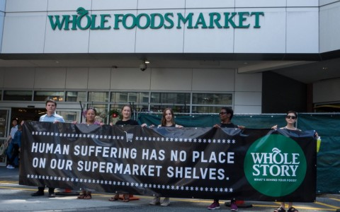 whole foods banner