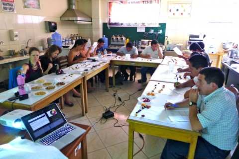 cacao tasting