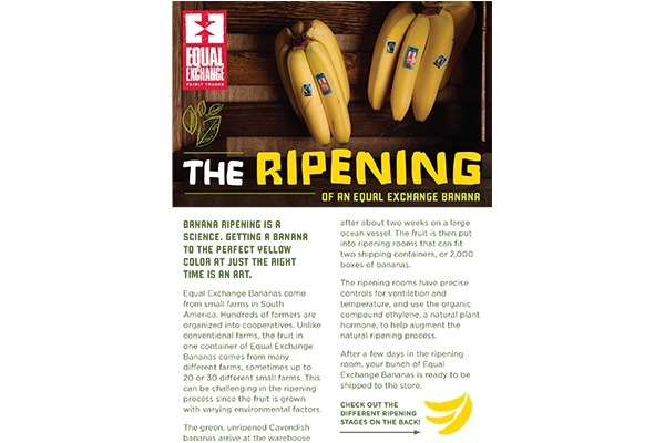 The Ripening of an Equal Exchange Banana